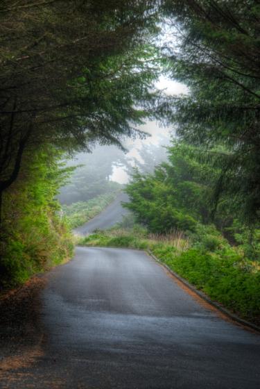 Maralee_Park_Day153_00002  A foggy road