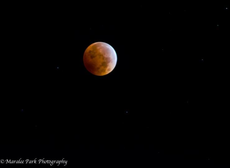 Moon-4299October 07, 2014