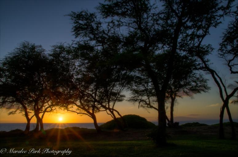 Hawaii 2014.Maralee-6606November 19, 2014