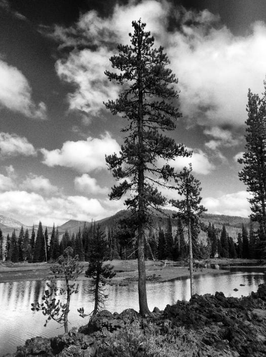 Sparks Lake 1