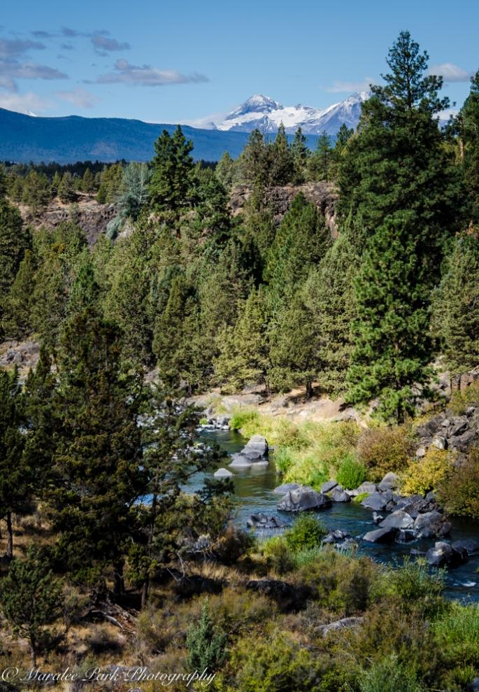 Gerry Landscape-6011September 04, 2015