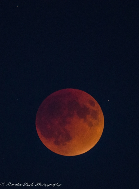 Lunar Eclipse-6925September 27, 2015
