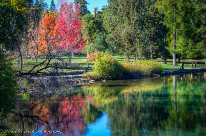Autumn-7004October 12, 2015