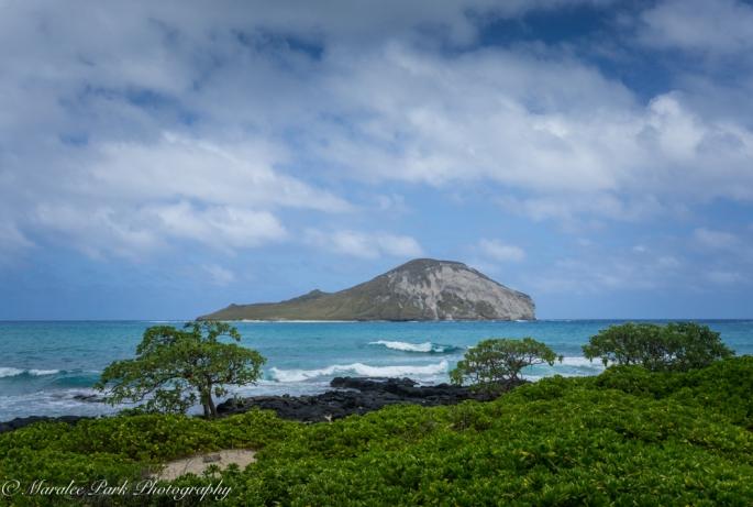Hawaii-02188April 08, 2016