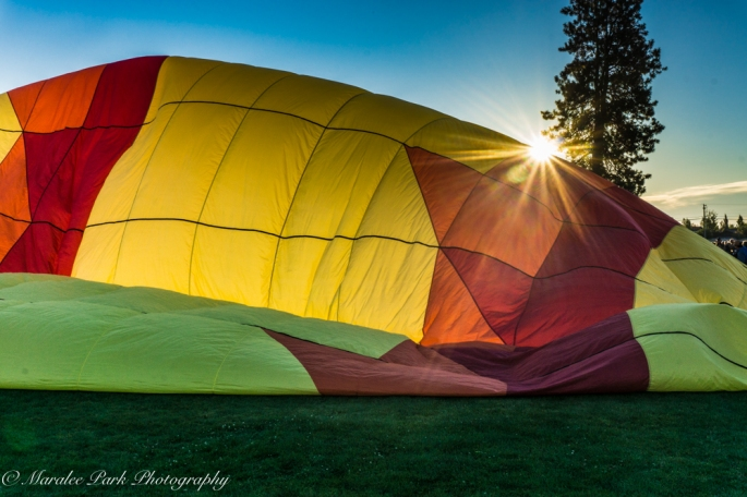 Balloons-04033July 23, 2016