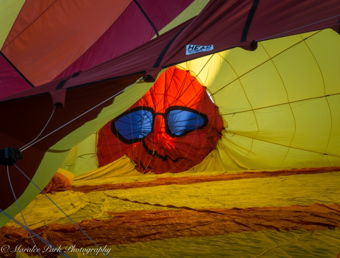 Balloons-04041July 23, 2016