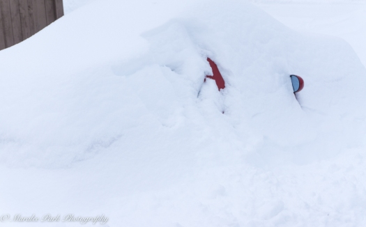 "A good excuse for not being able to get to work: ""I can't find my car."""