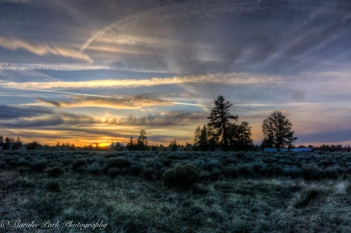 march-01-2017nature4797_8_9-2