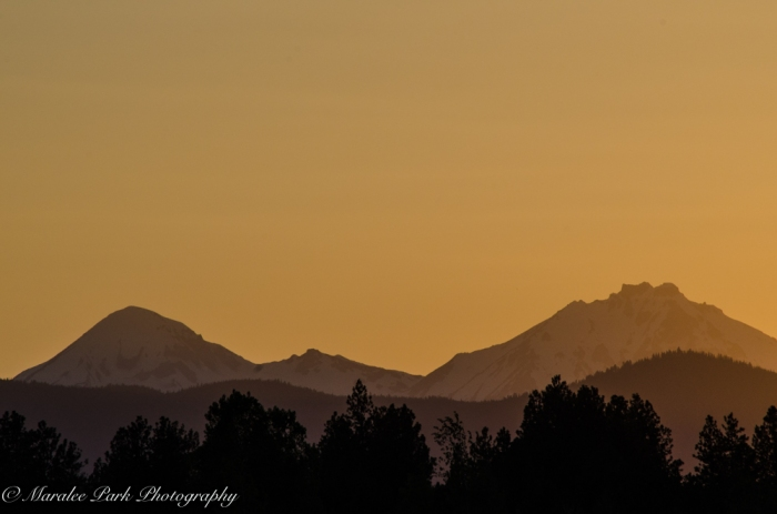 Golden Sunset Silhouette
