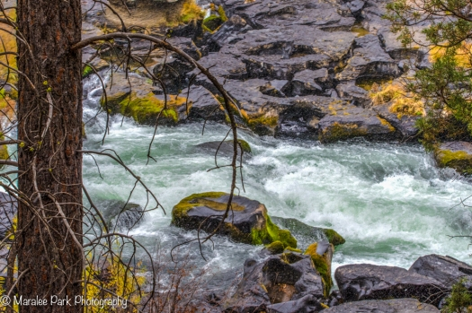 Water rushing in the Deschutes River