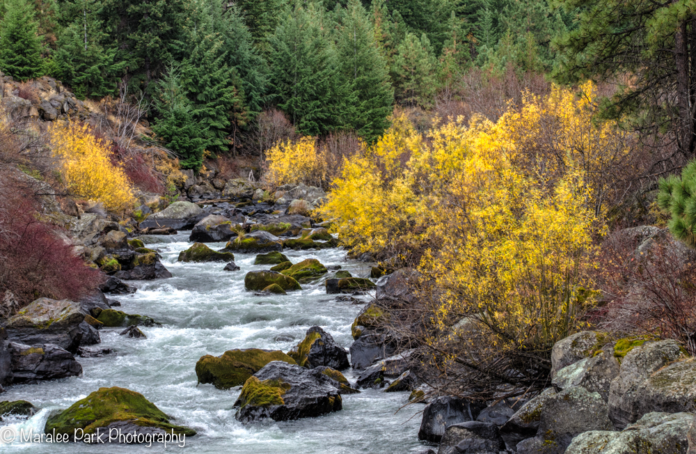 There was still some color along the river.