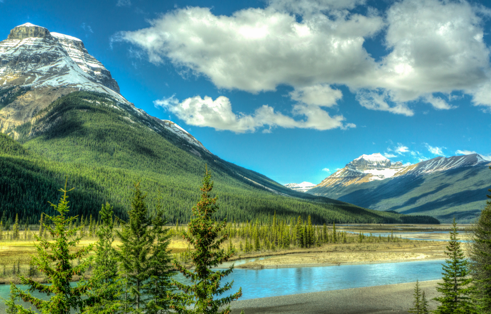 Along the Columbia Icefields Parkway