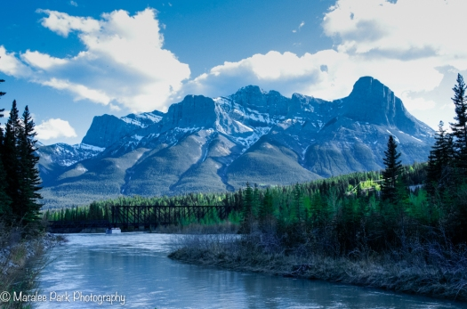 Along the Bow River