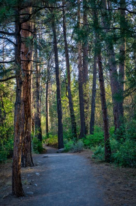 Shevlin Park Trail