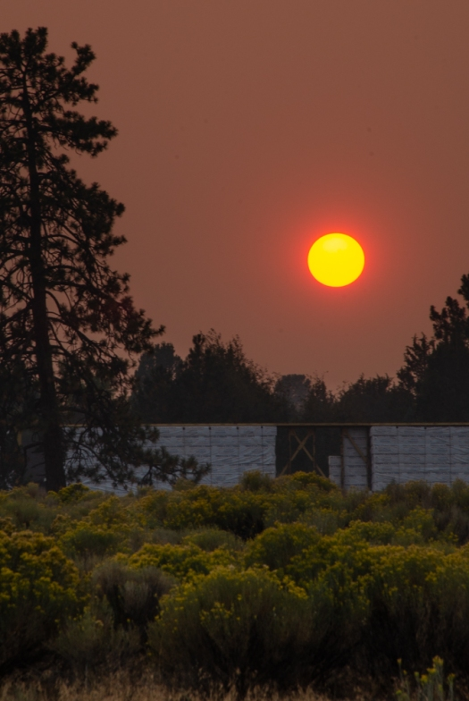 Smokey Sunset