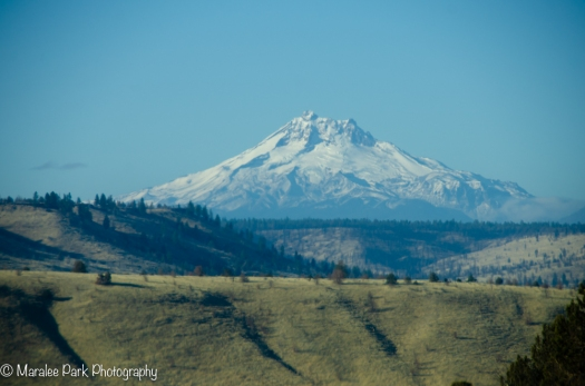 Mt. Jefferson, Oregon Cascades