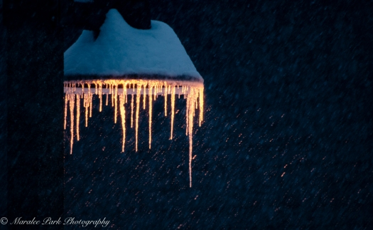 Icicles on street lamp